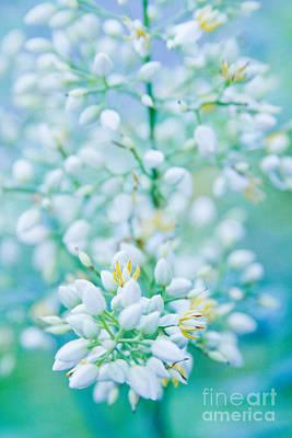Photograph - Kula Enchanting Florals by Sharon Mau