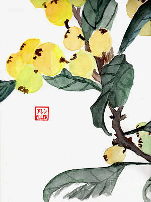 Photograph - Kumquats  Chinese Watercolor Painting by Merton Allen