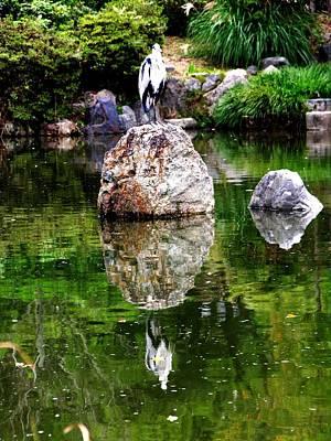Photograph - Kyoto - Japanese Crane by Jacqueline M Lewis