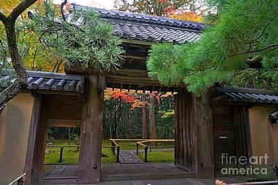 Apan Photograph - Kyoto Arashiyama by Sergey Reznichenko