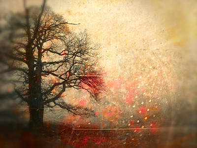 Aimelle Photograph - L Arbre De Vie - S44av02 by Variance Collections