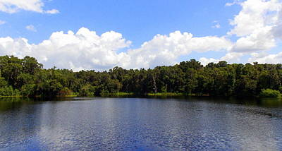 Photograph - La Chua Pond 1 by Sheri McLeroy
