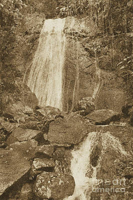 Photograph - La Coca Falls El Yunque National Rainforest Puerto Rico Prints Vintage by Shawn O'Brien