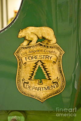 Photograph - La Forestry Department Emblem by Pamela Walrath