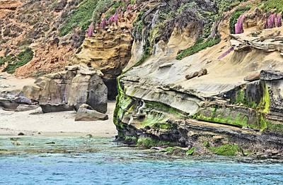 La Jolla Cliffs Art Print
