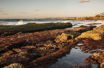 Photograph - La Jolla Cove Rocks by Lee Kirchhevel