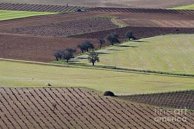 Heiko Koehrerwagner Photograph - La Mancha Landscape - Spain Series-cinco by Heiko Koehrer-Wagner