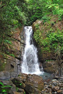 Photograph - La Mina Falls El Yunque Nf by Alan Lenk