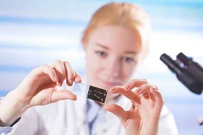 Scrutiny Photograph - Lab Assistant Holding Microscope Slide by Wladimir Bulgar