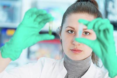 Lab Assistant Holding Samples Art Print