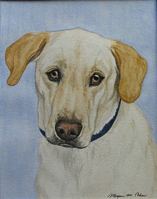 Pet Portraits Painting - Lab by Megan Cohen