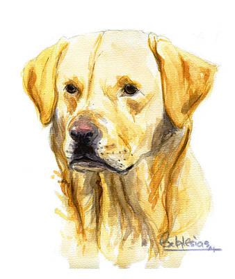 Labrador Original