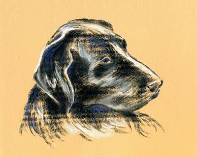 Art Print featuring the pastel Labrador Retriever - Black Dog Pastel Drawing by MM Anderson