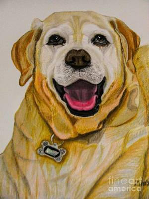 Dogs Drawing - Labrador Retriever Drawing by Zina Stromberg