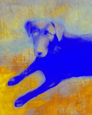 Digital Art - Labrador Retriever In Blue And Yellow by Ann Powell