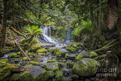 Photograph - Lady Barron Falls II by Ray Warren