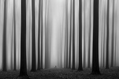 Haze Photograph - Labyrinth by Jochen Bongaerts