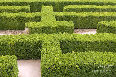 Sports Maze Photograph - Labyrinth by Patricia Hofmeester