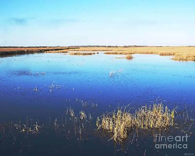 Photograph - Lacassine Pool Nwr Afternoon Louisiana by Lizi Beard-Ward