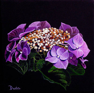 Floral Guest Room Painting - Lace Cap Hydrangea by Susan Duda