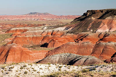 Photograph - Lacey Point Painted Desert Petrified Forest National Park by Fred Stearns