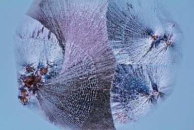 Lactose Crystals Print by Antonio Romero