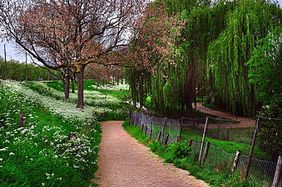 Path In Life Photograph - Lacy White And Viridian Green Of Dutch Spring by Jenny Rainbow