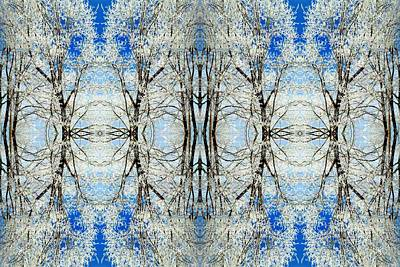 Lacy Winter Trees Abstract Art Photo Art Print by Marianne Dow