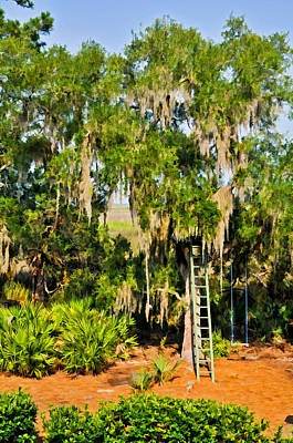 Photograph - Ladder And Swing In Marsh Garden by Ginger Wakem