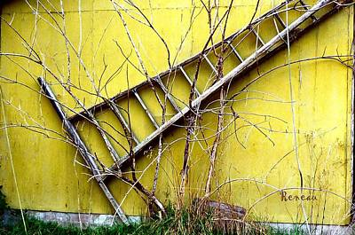 Photograph - Ladder Art by Sadie Reneau