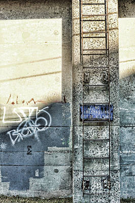Cement Photograph - Ladder by HD Connelly