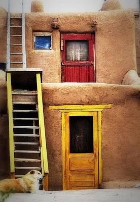 Photograph - Ladders Doors And The Dog by Nadalyn Larsen