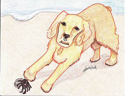 Cocker Spaniel Drawing - Lady And The Sandcrab by Nancy Suiter
