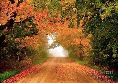 Country Landscape Photograph - Lady Autumn by Terri Gostola