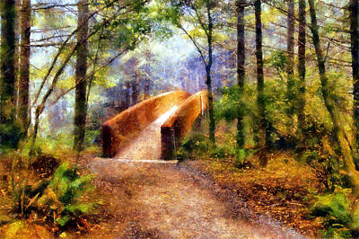 Lady Bird Johnson Grove Bridge Art Print