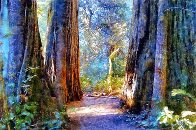 Lady Bird Johnson Grove Art Print