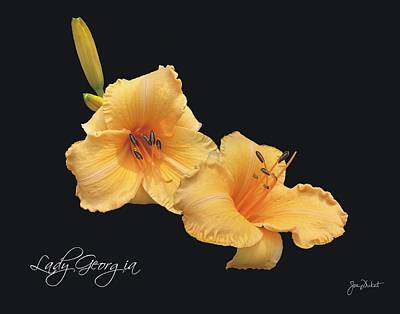 Photograph - Lady Georgia Daylily by Joe Duket