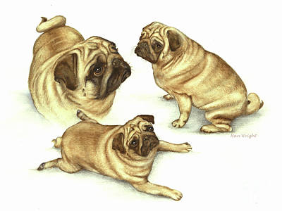 Painting - Lady Marmalade Of Lydiard Pug by Nan Wright