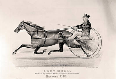 Dam Drawing - Lady Maud Bay Mare, By General Knox Pedigree Of Dam by Litz Collection