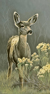 Doe Painting - Lady by Paul Krapf