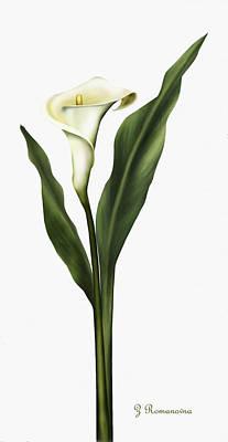 Lilies Mixed Media - Lady So Pure by Georgiana Romanovna