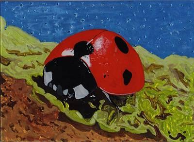 Ladybug Original