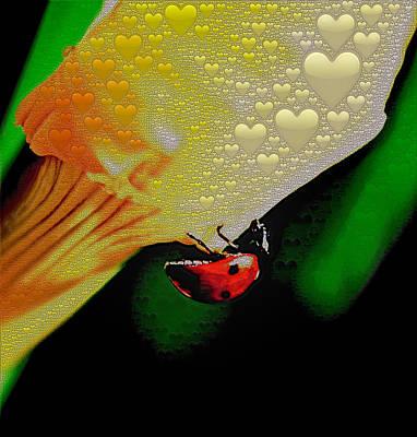 Photograph - Ladybug Love by Bill Owen