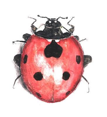 Venice Beach Bungalow - Ladybug by Nathan Ryan