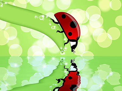Nature Photograph - Ladybug On Leaf Looking At Water Reflection by David Gn