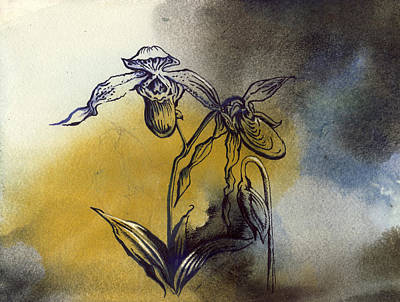 Art Mobile Mixed Media - Ladyslipper Orchid Drawing by Alfred Ng