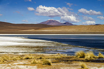 Photograph - Lagoon Grass Bolivia by For Ninety One Days