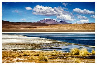 Photograph - Lagoon Grass Bolivia Framed by For Ninety One Days