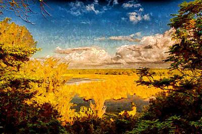 Lagoon View Art Print