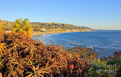 Photograph - Laguna Beach Scenics by Charline Xia